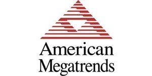 41 American Megatrends